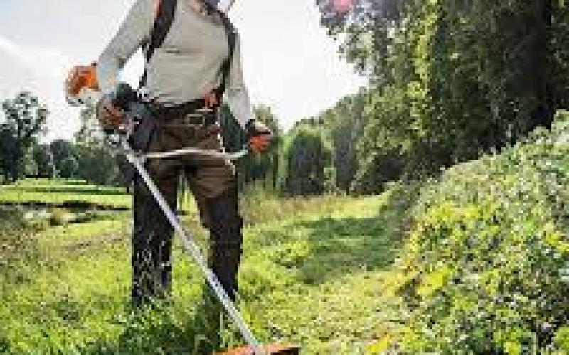 Povoljno odrzavanje svih zelenih povrsina