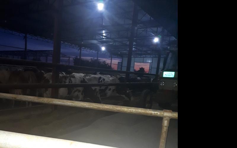 Potreban radnik na farmi