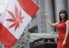 Kanabis u Kanadi: nestašica, kazne i izviđački kolači
