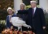 Tramp pomilovao dvije ćurke: Upozorio sam ih na demokrate