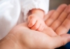 Porodilište: Nema rođenih beba