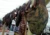 FOTO Otvoren Semberski sajam mesa u Bijeljini