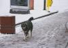 Meteorolozi objavili kada nam stiže snijeg