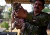 U zoološkom vrtu u Meksiku na svijet došao tigrić Kovid