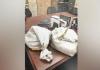 Na porodičnom izletu pronašli vreće sa milion dolara