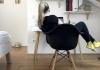 Sud presudio: Poslodavci dužni da plate dio kirije za rad od kuće