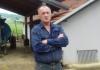 Štetočina na majevičkim šljivama: Zbog šljivine ose voćari zabrinuti za prinos