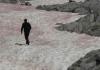 Roze sneg i led na Alpima i zašto su naučnici zabrinuti