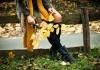 Čizme + haljina = SAVRŠENA JESENJA KOMBINACIJA