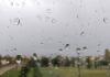 Bijeljina: Promjenljivo oblačno sa slabom kišom