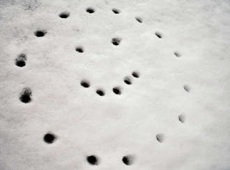U Austriji pao sneg, nanosi i do 25 centimetara