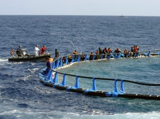 Grčka spasila 60 imigranata iz mora