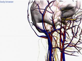 3D vodič kroz telo