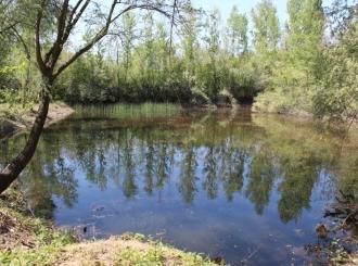 """Radnici Gradske uprave, ekolozi i ribolovci u akciji čišćenja područja Eko-kampa """"Jezera"""""""