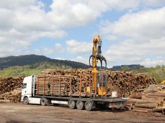 Iz šuma Srpske godišnje se ukrade od 15 do 20.000 kubnih metara sirovog drveta