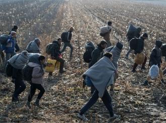 Otkrivena mreža šverca migranata