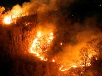 Brazilska vojska danas će biti raspoređena na požarištima u Amazoniji