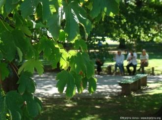 Bijeljina: Sunčano i toplije