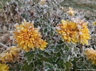 Bijeljina: Oblačno i hladno