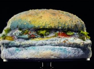 """VIDEO Lepota buđi – novi hamburger """"Burger kinga"""""""