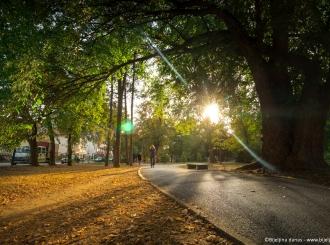 Bijeljina: Promjenljivo i toplo vrijeme