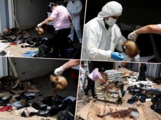 Paragvaj: Sedam leševa u fazi raspadanja stigli u kontejneru iz Srbije!