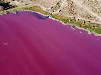 Od prirode se ništa ne može sakriti – laguna u Argentini promenila boju