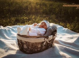 Porodilište: Sedam beba