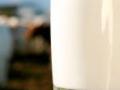 Desetak semberskih mljekara biće isključeno iz sistema otkupa mlijeka