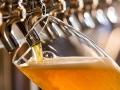 Američki naučnici stvorili pivo bez hmelja sa ukusom hmelja