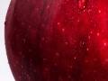 Kazna od 500 dolara zbog jabuke u torbi
