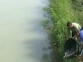 Ribolovci iz Bijeljine obogatili vode sa 700 kilograma mlađi šarana