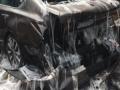 Tri tone jegulja izazvalo haos na auto-putu (FOTO)