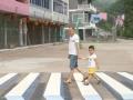 Budućnost pešačkih prelaza i ležećih policajaca