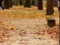Bijeljina: Jutarnja temperatura 12, maksimalna dnevna do 23 stepena