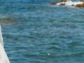 Pogled na more smanjuje stres