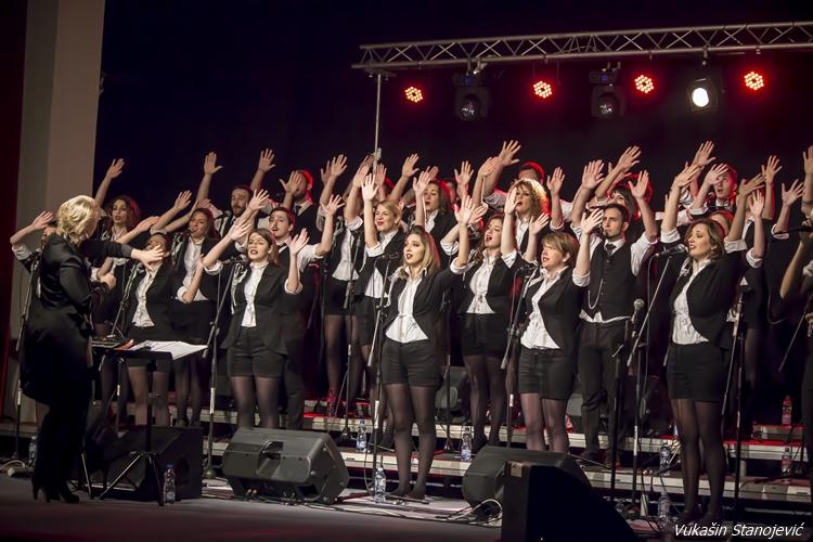 Bijeljina, Viva Vox Centar za kulturu Semberija