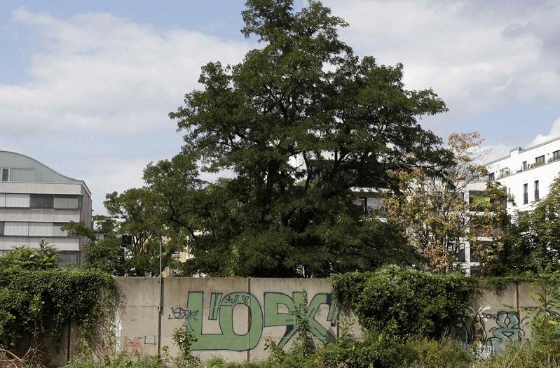 Pronađen još jedan nepoznati deo Berlinskog zida