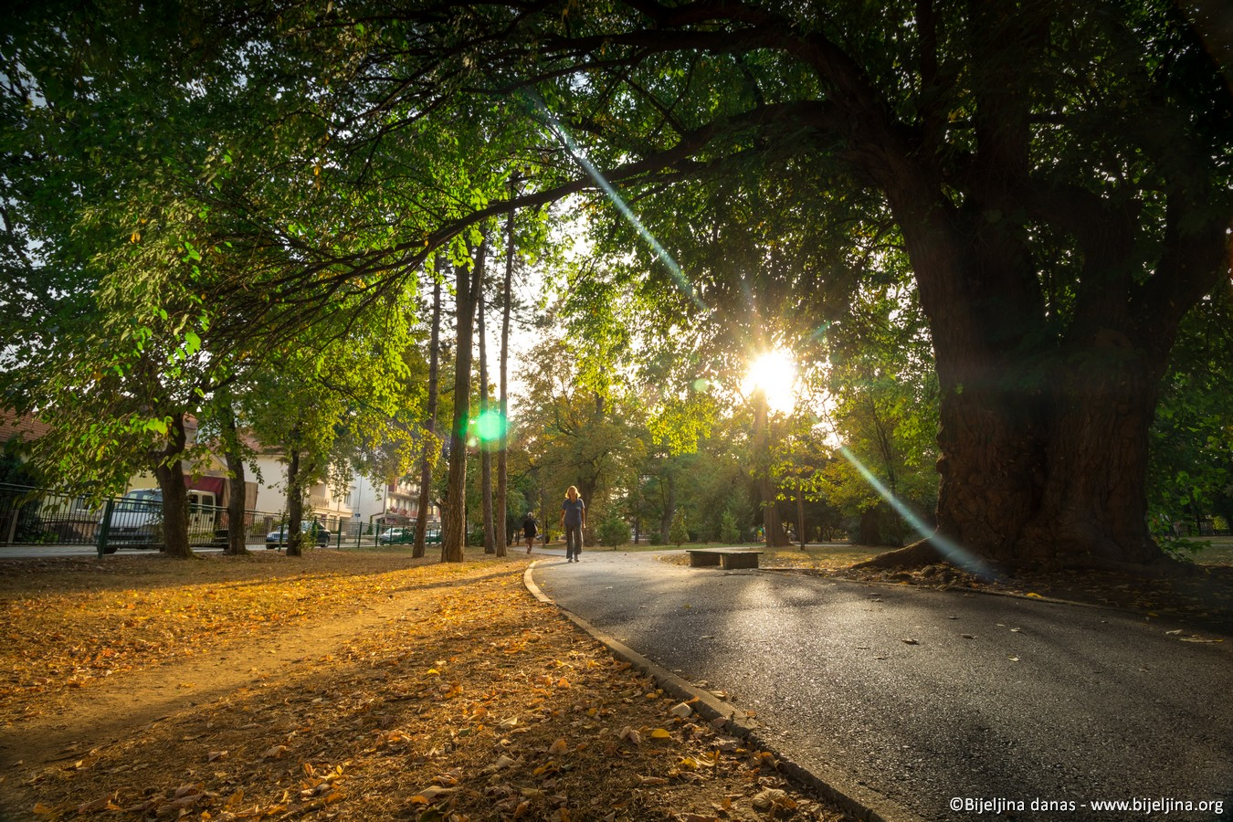 FOTO Gradski park - ponos Semberije