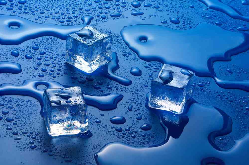 Kockice leda su pravo leglo bakterija