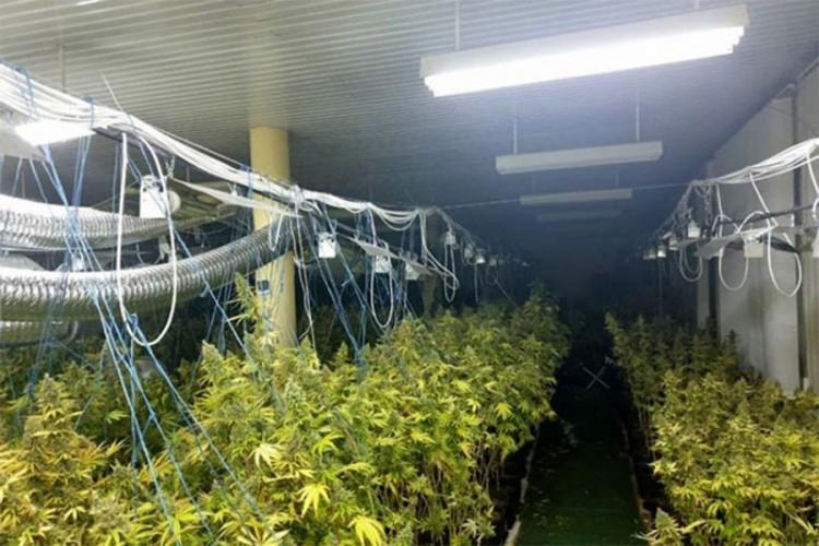 Otkrivena velika laboratorija za proizvodnju droge u Banjaluci